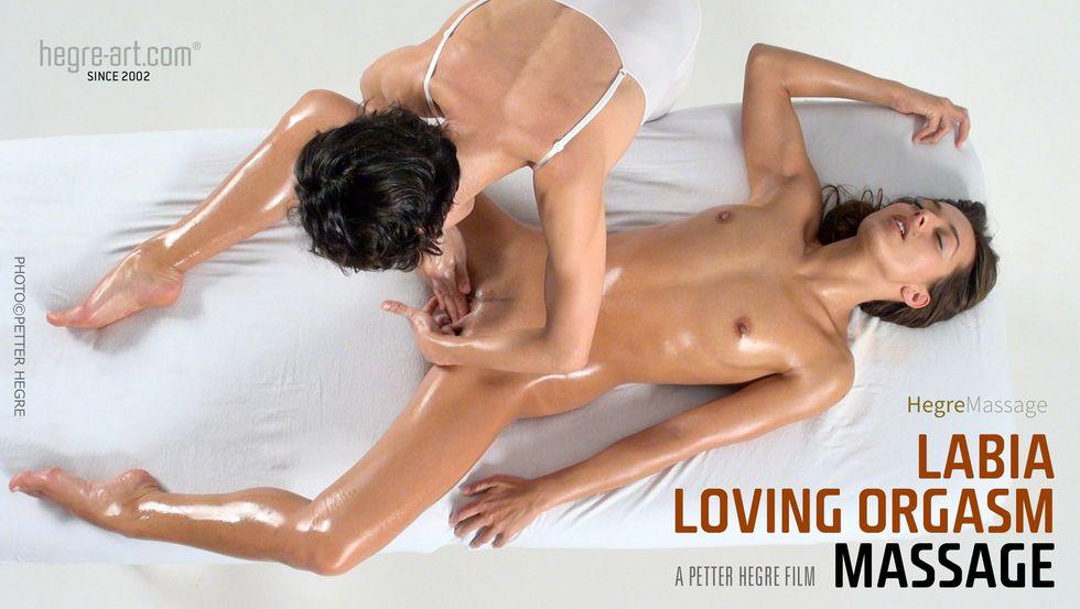 forum  board massage member