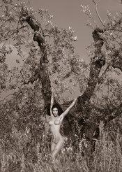 Desnudos toscanos