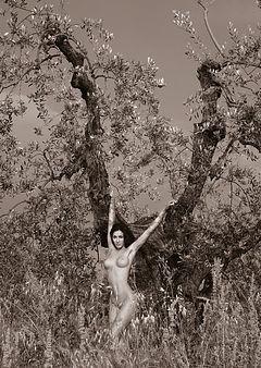 Tuscany Nudes 7
