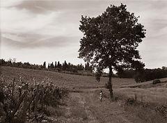 Tuscany Nudes 20