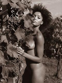 Tuscany Nudes 44