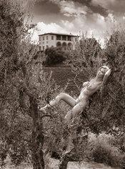 Desnudos toscanos 52