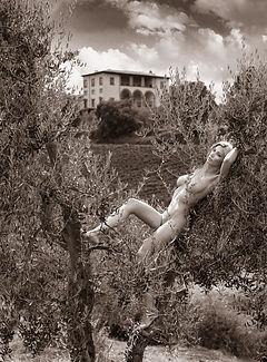 Tuscany Nudes 52