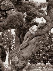 Desnudos toscanos 63
